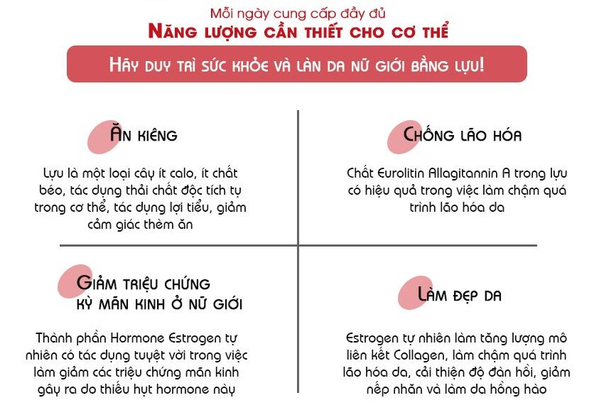 nang luong can thiet cho co the